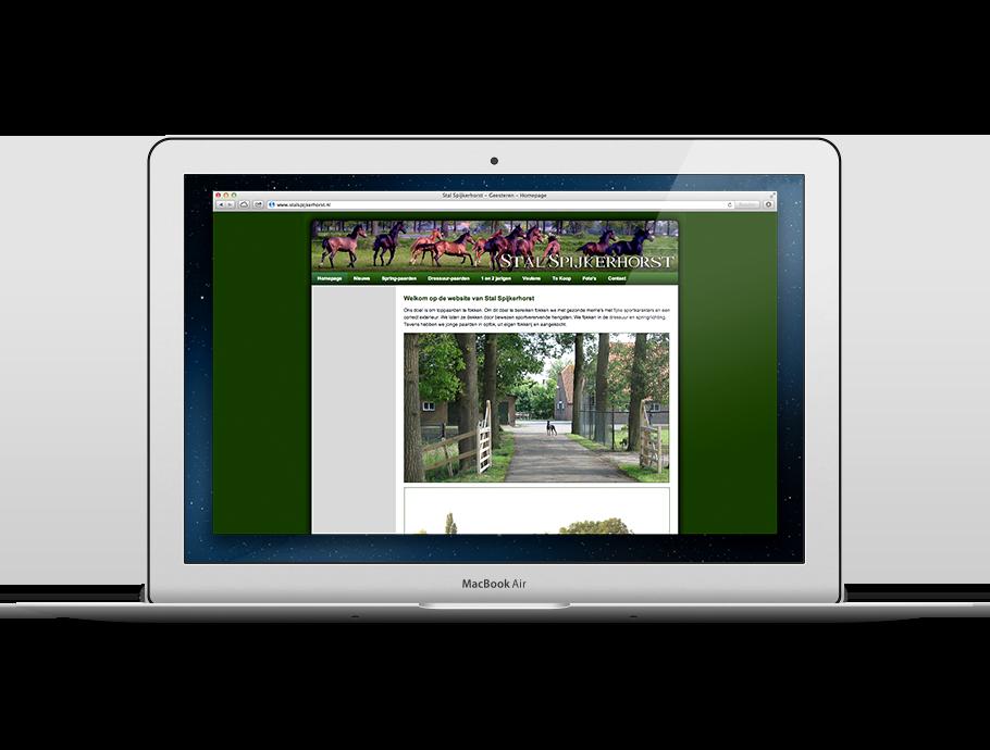 website_stalspijkerhorst_2